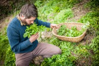 Thom Hunt - Forager at Philleigh Way